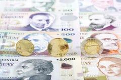 Uruguayan Pesomuntstukken