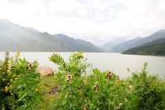 Urumqi mountain lake Royalty Free Stock Images
