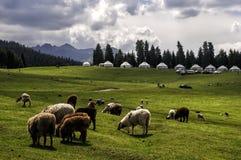 Urumqi Nanshan scenic areas. Eastphoto, tukuchina,  Urumqi Nanshan scenic areas Royalty Free Stock Image