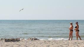 URZUF UKRAINA - SEPTEMBER 8: folket matar seagulls på kusten på September, 8 2015 i Urzuf, Ukraina arkivfilmer