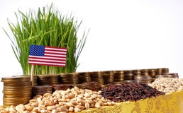 US American flag waving with stack of money coins and piles of seeds Stock Images