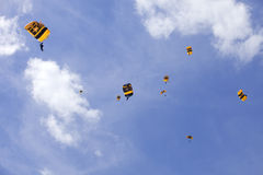 US Army Golden Knights Stock Photography