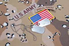 US ARMY special forces tab with blank dog tags Royalty Free Stock Images