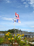 US and Canadian flags. Plus the provinces of Nova Scotia, Newfoundland and Labrador flying on one flagpole Royalty Free Stock Photos