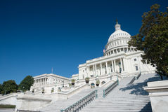 The US Capitol Royalty Free Stock Photography