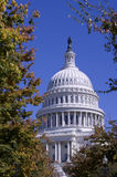 US Capitol Stock Photos