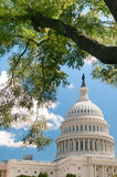 US Capitol. The United States Capitol Building in Washington, DC Royalty Free Stock Photo
