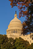 US Capitol building in Fall at sunset Stock Image