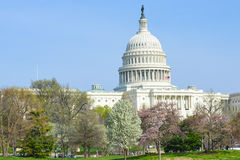 US Capitol building in spring - Washington DC Royalty Free Stock Photos