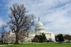 US Capitol building in spring, Washington DC, USA royalty free stock photos