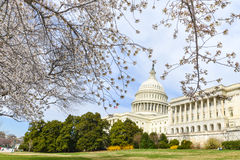 US Capitol building in spring, Washington DC, USA Royalty Free Stock Photography