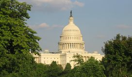 US Capitol Building in Washington D.C. Capitol building surrounded by trees Royalty Free Stock Photo