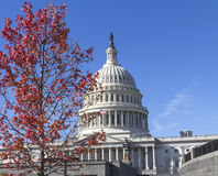 US Capitol Building. Stock Photo