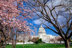 US Capitol Building Royalty Free Stock Images