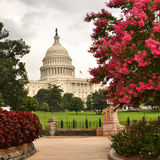 US Capitol building, Washington DC, USA Royalty Free Stock Photography