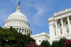 US Capitol building , Washington DC Stock Image