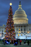 US Capitol Christmas Tree Stock Photos