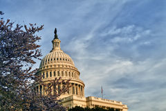 US Capitol Dome. The United States Capitol Building Dome on the mall in Washington D.C Royalty Free Stock Photography