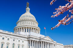 US Capitol at spring sunny day Stock Photography