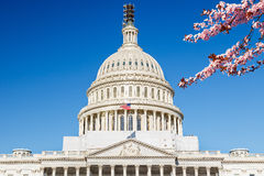 US Capitol at spring sunny day Stock Image