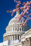US Capitol at spring sunny day Royalty Free Stock Photo