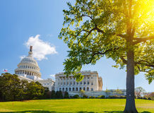 US Capitol at sunny day Stock Images