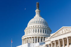 Us-Capitol, Washington DC Fotografering för Bildbyråer