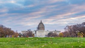 US Capitol in Washington DC. At autumn morning stock footage