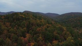 US Countryside Aerial. V8 Flying low over autumn rolling hills panning near Helen GA stock video