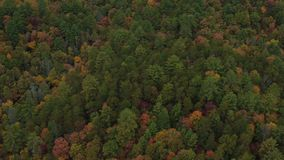 US Countryside Aerial. V10 Flying low over autumn rolling hills panning up near Helen GA stock video footage