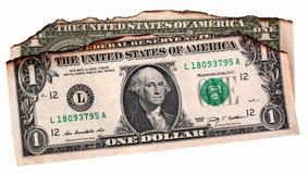 US dollar Arkivbild