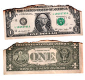 US dollar Royaltyfri Foto