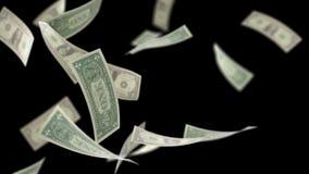 US Dollars Falling Loopable on Black with Luma Matte 4K