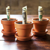 Us dollars planting in flower pots Royalty Free Stock Photography