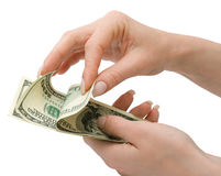 US Dollars in womans hand, isolated Stock Photos