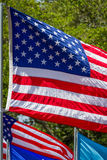 US flag blowing in the wind Stock Images
