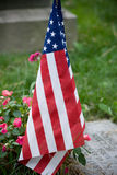 US Flag in cemetery. US Flag on cemetery gravestone Stock Image