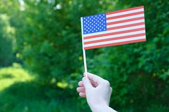 The US flag holds in the hand against a background of green foliage. stock photography