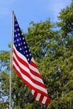 US FLAG MEMORIAL DAY. A US Flag with a tree with  blue sky and white cloud's on Memorial day that's bright and colorful Royalty Free Stock Photography