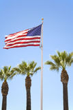 US Flag and Palm Trees Royalty Free Stock Photography