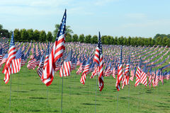 US Flag Waving outside the Saint Louis Art Museum Royalty Free Stock Photos