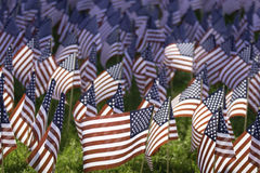 US Flags. Small American flags in celebration of Memorial Day Stock Image