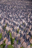 US Flags. Small American flags in celebration of Memorial Day Royalty Free Stock Photography
