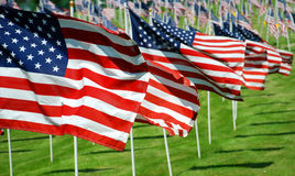 US Flags. Severl US flags blowing in the wind royalty free stock images