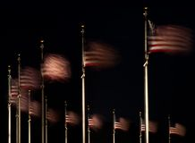 US flags fluttering Stock Image