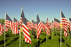 US flags in honor of 911 Royalty Free Stock Images