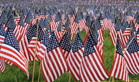 US flags in a memorial. Place Royalty Free Stock Photography