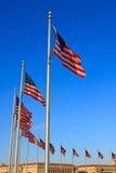 US flags near Washington Monument Royalty Free Stock Photo