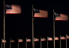 US Flags at Night. US flags fluttering in the breeze in Washington DC Royalty Free Stock Photo