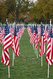 US Flags in a park. Lines of US Flags on the Mall in Washington DC Royalty Free Stock Photo